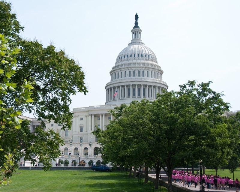 The Capitol D.C.