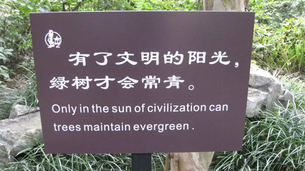 Chinese Sign 5