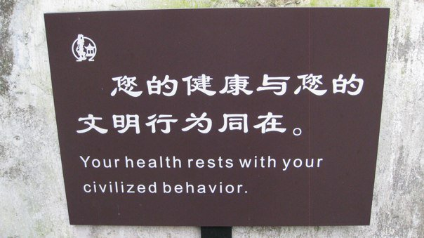 Chinese Sign 7