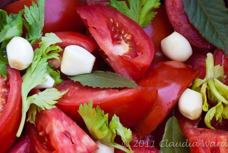 Tomatoes, Garlic, Bay Leaves and Parsley © Claudia Ward