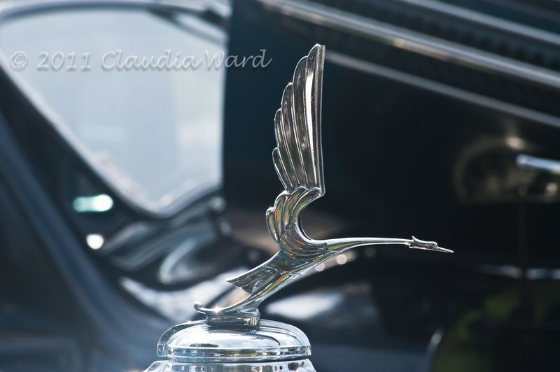 Antique_Hood_Ornaments_© 2011 Claudia Ward