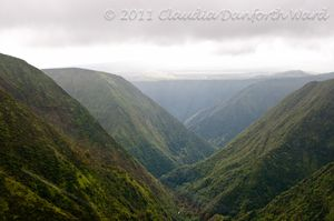Mountain Valleys on the Hamakua Coast of Hawaii
