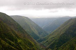 Mountain Valleys on the Hamakua Coast of Hawaii