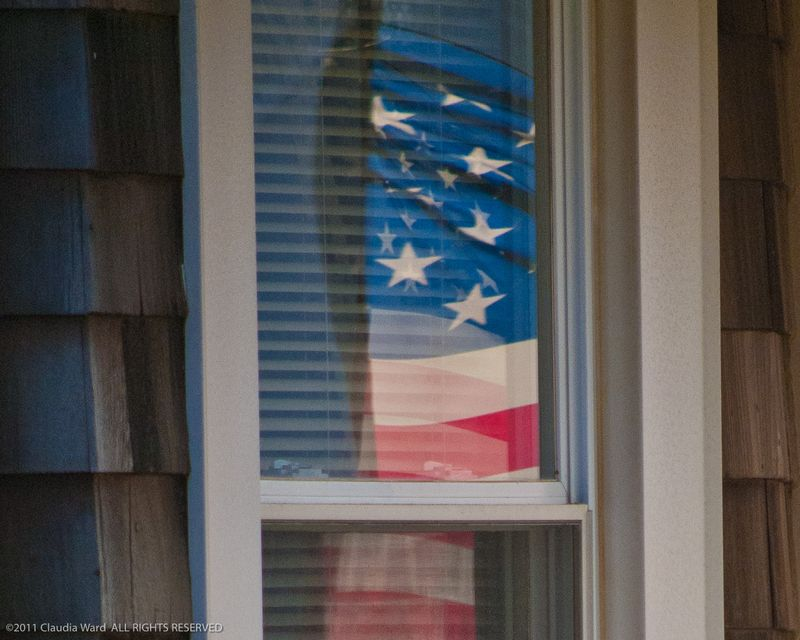Veteran's_Day_Flag