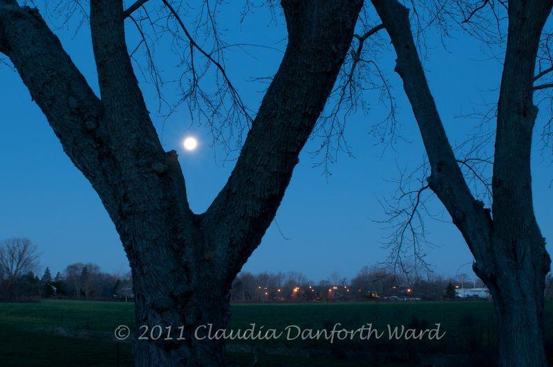 Setting_Moon_20111211_064435