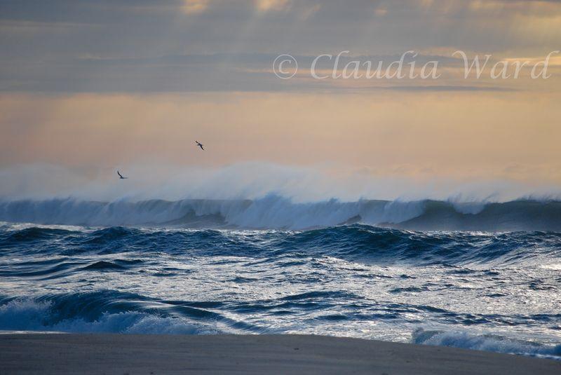 Stormy_Beach_20100920_081711