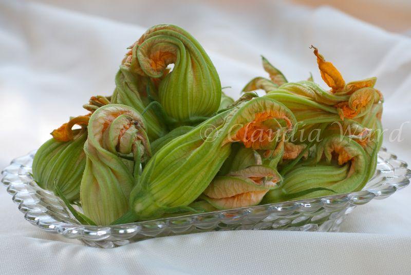 Zucchini_Blossoms_20100703_155437