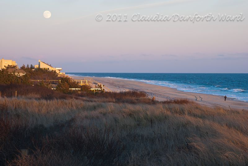 Rising December Moon in the Hamptons