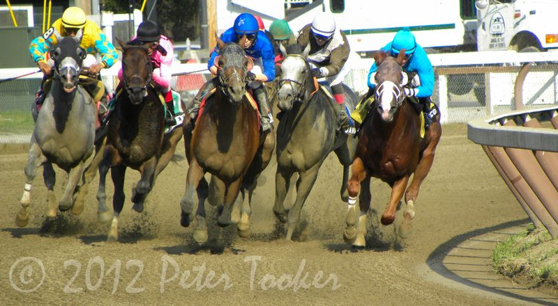In to the Final Stretch at Saratoga Racetrack