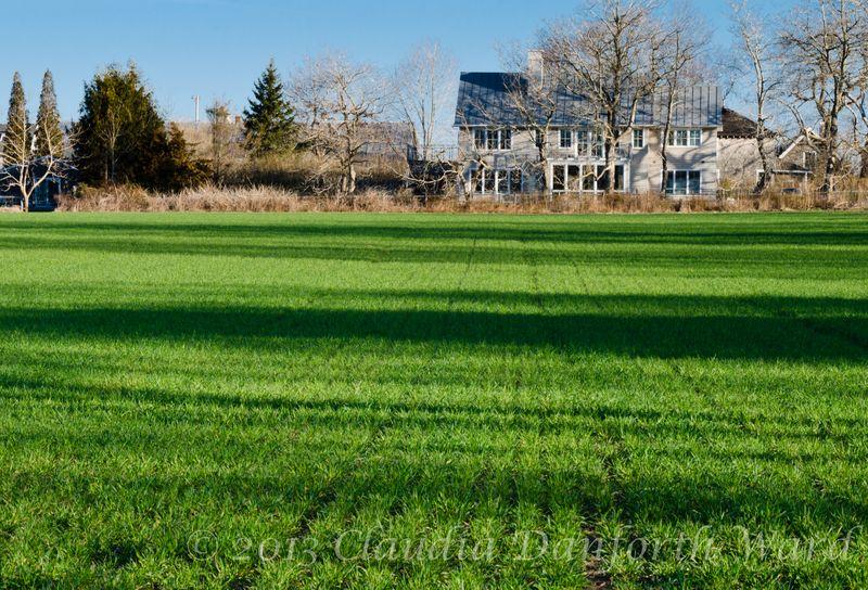 The Grass Is Always Greener ... Across the Street