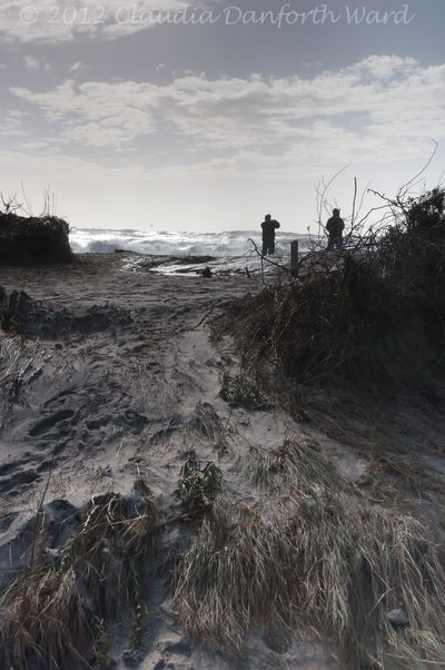 Sandy Breached the Dunes at Sagg Main in Sagaponack