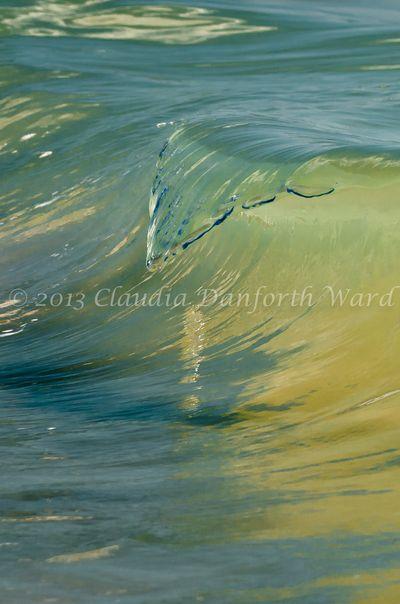 Touchdown © 2013 Claudia Danforth Ward