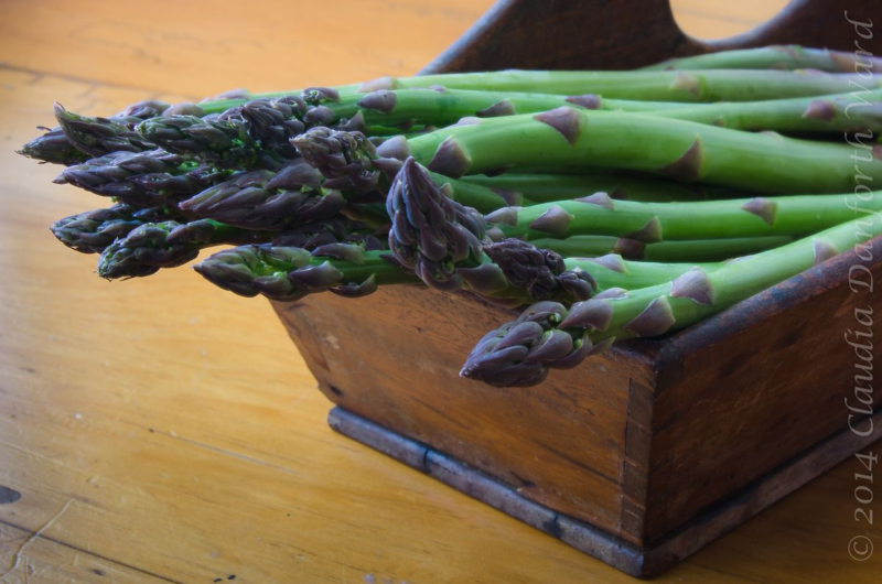 Spring Asparagus © 2014 Claudia Ward