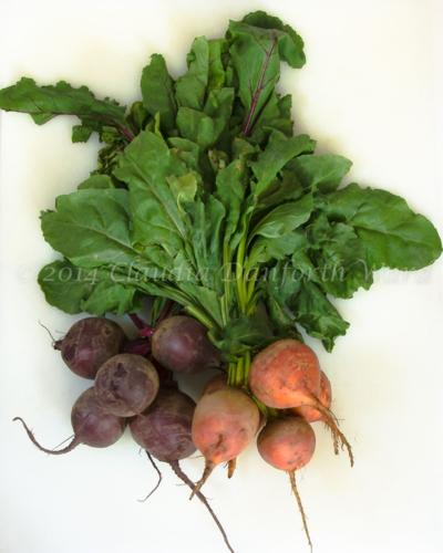 Fresh Beets and Greens © 2014 Claudia Ward