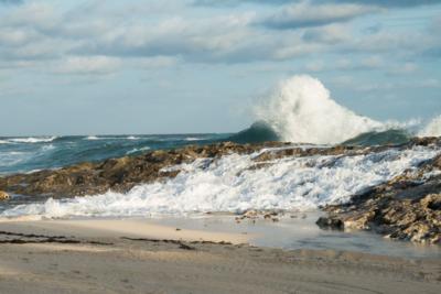 Bahamian Seas © 2013 Claudia Ward