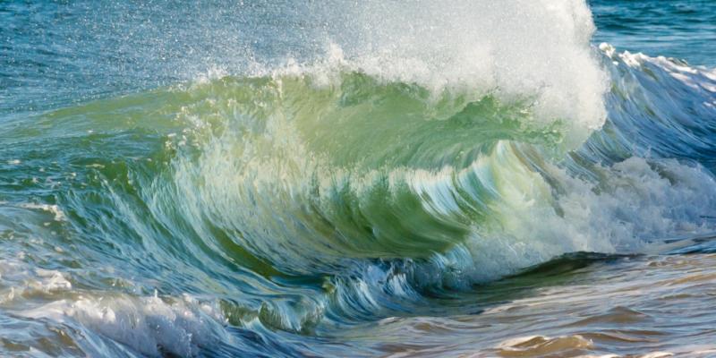 """""""Shore Break"""" © Claudia Ward"""