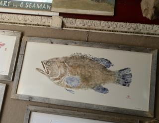 Gyotaku, Fish Art by Chuck Seaman