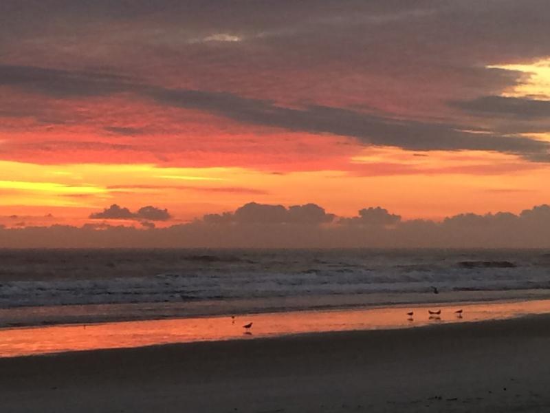 Atlantic Sunrise © 2015 Claudia Ward