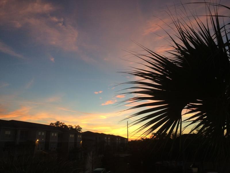 Lakeland Sunrise