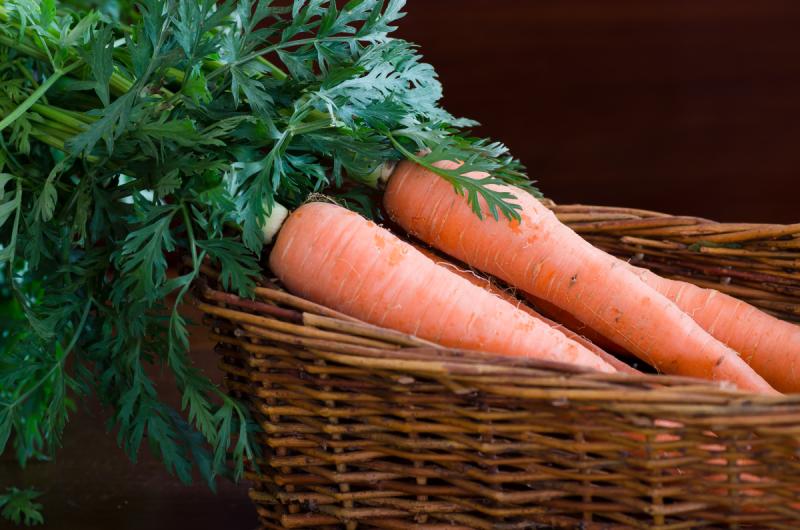 Carrots © Claudia Ward