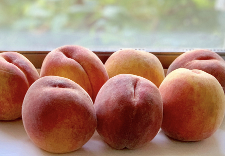 Peaches © 2019 Claudia Ward